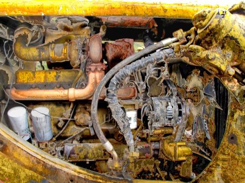 Motor en Coma - foto Gino Lofredo (2009)