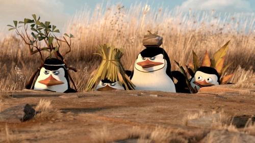 penguin-emboscada1