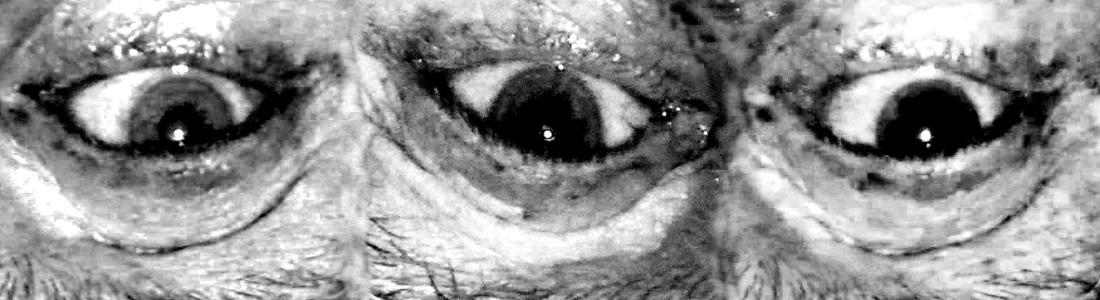 Tres Ojos del Reta Reverse