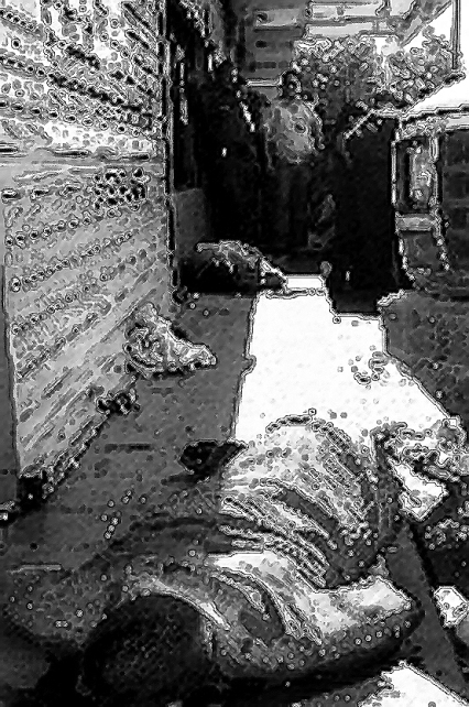 Wayuu maracaibo asesinato