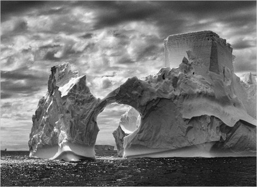 Salgado Antártida Témpano
