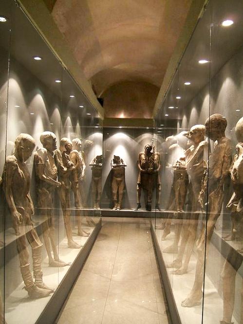 Guanajuato Momias Museo