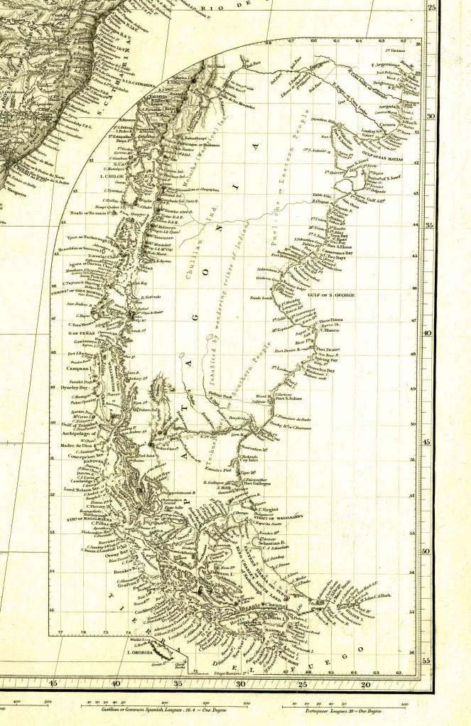 Patagonia Beagle